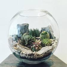the bioattic desert world terrarium is a miniature landscape of