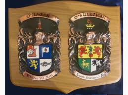 Family Crest Flags Double Family Crest Plaque Large 16 14 Inch