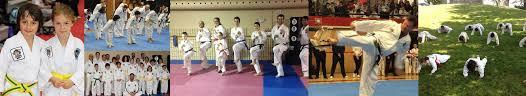 Hamilton Of Martial Arts Jiu by Taewon Do Martial Arts Instructors In Hamilton Ontario