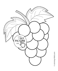 grapes coloring pages fruits printable coloring pages coloringzoom
