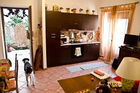 pet friendly rome apartment and parks the road unleashed pet