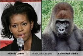 Meme Michelle Obama - michelle obama totally looks like a silverback gorilla cheezburger
