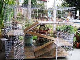 How To Build An Indoor Rabbit Hutch How To Build A Rabbit Condo Indoor Rabbit Hutch Plans