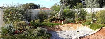 astounding australian native garden ideas 21 in interior design