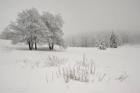winter day by emmanueldautriche on deviantart