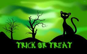 black cat the scary night of halloween digital 4k uhd wallpaper