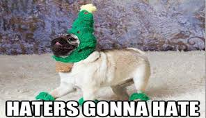 Best Christmas Memes - i can has cheezburger christmas memes funny animals online