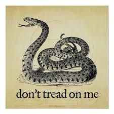 Don T Tread On Me Tattoo Ideas 79 Best Quilt U0027s Don U0027t Tread Images On Pinterest American Pride