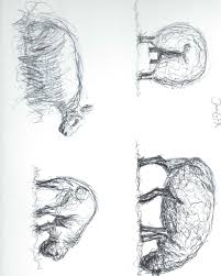 sketch henry moore style sheep by jack gfx on deviantart