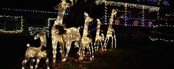 christmas light park near me archer park lights make it a christmas you won t forgetprestonsburg