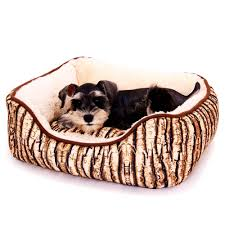 bedroom lovely rules the jungle designer dog beds for small dogs