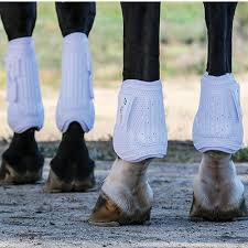 s xc boots 83 best products we images on horses boots