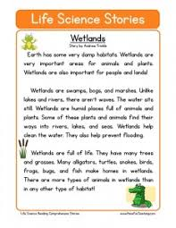 9th Grade Reading Comprehension Worksheets Free 9th Grade Reading Comprehension Worksheets Mediafoxstudio Com