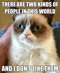 Meme Space - 22 hilarious grumpy cat memes animal space