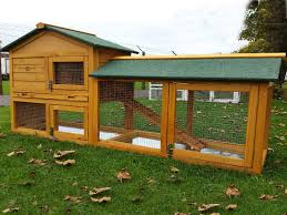Large Rabbit Hutch With Run Your Requirement Of Rabbit Hutches Fulfilled For Good