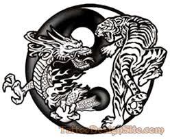 wonderful black white tiger in yin yang