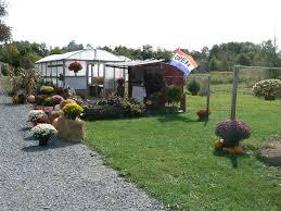 hughes farms localharvest