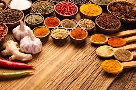 cuisine hindou la cuisine de lovita la cuisine indienne à votre domicile