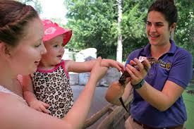 photos u0026 videos dallas zoo