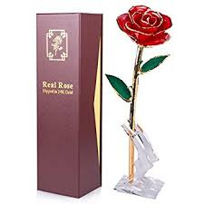 gold dipped roses gold dipped sinvitron stem 24k gold dipped