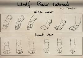 Dog Anatomy Front Leg Wolf Paw Tutorial By Rizuuki On Deviantart