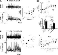 orexinergic activation of medullary premotor neurons modulates the