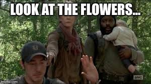 Look At The Flowers Meme - the walking dead imgflip