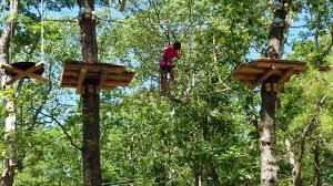 tree to tree adventure park cape may nj