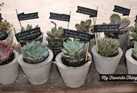 ink about me bless you concrete succulent planters