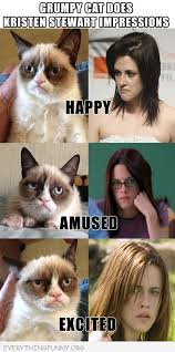 Funny Grumpy Cat Meme - best of grumpy cat memes archives everything funny