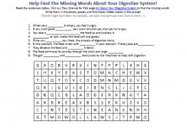 digestive system activity sheet free printable kids science