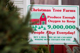 christmas tree farm fort wayne indiana st joe tree farm