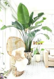 indoor plants singapore artificial plants for home decor bamboo grass silk plant artificial