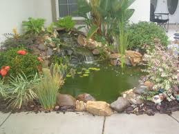 pond maintenance services orlando florida water garden pond contractor