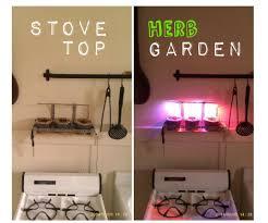 simple indoor herb garden with adjustable grow light 5 steps