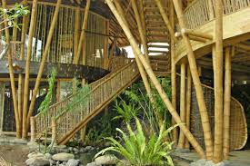 amazing jungle luxury homes hand crafted from trees