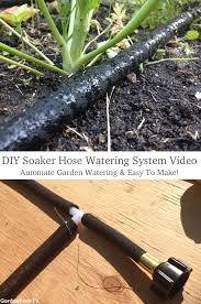 Cool Hoses by Best 25 Drip Irrigation Ideas On Pinterest Irrigation