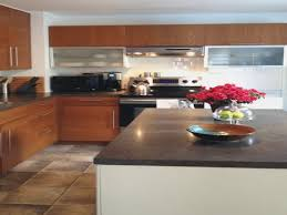 birch kitchen cabinets pros and cons elegant birch kitchen cabinets pros and cons gl kitchen design