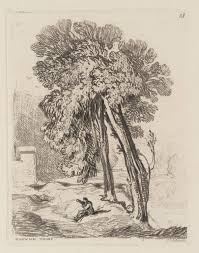 trees at norwich thorp norfolk sell cotman tate