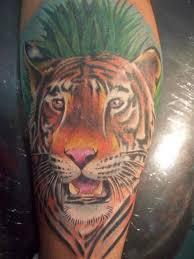 tiger by mandinga