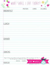 printable planner diary 15 best korean journal diary planners images on pinterest caro