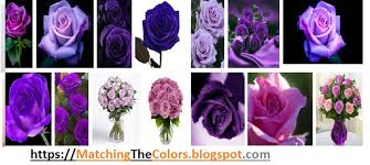 purple color meaning what r u know about colors meanings and matching