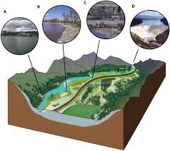 gravel bed river floodplains are ecological nexus glaciated