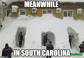 South Carolina Memes - meanwhile in south carolina meme