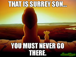Lion King Meme Blank - that is surrey son you must never go there meme lion king