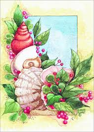 tropical christmas cards coastal shells diane knott warm weather tropical
