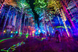 Stone Zoo Lights by 18 Best U S Summer Music Festivals From Bonnaroo To Edc Photos