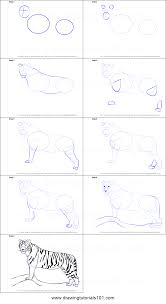 how to draw a tiger printable step by step drawing sheet