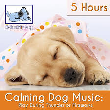 Pet Photo Albums Amazon Com Calming Music For Dogs Reduce Anxiety During