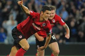 Cardiff City skipper Mark Hudson determined to stay top - Wales Online - mark-hudson-celebrates-the-winner-297114450-1992633